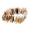 Fashion Jewelry Sound of Sea Trumpet Shell Stretch Bracelet-Aqua