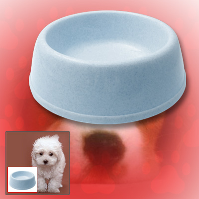 Cat Dog Pet Round Solid Plastic Water Food Feeder Bowl Dish Blue
