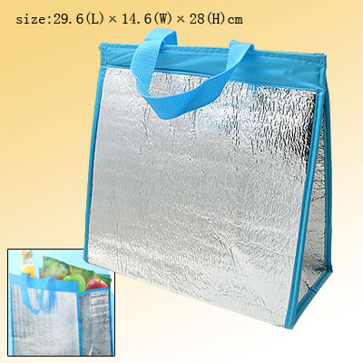 Insulated Keep Cooler Warm Picnic Lunch Bottle Tote Bag