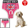 Size 3 Stylish Red Pet Sanitary Pant with Flag Design
