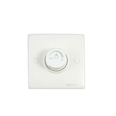 250V 300W Wall Mount Light Control Dimmer Rotary Switch