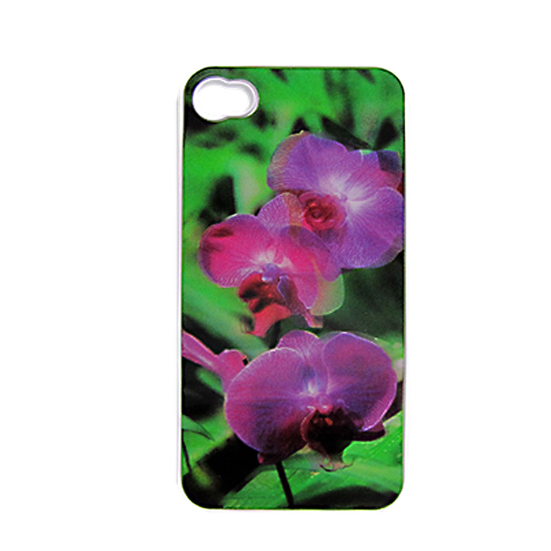 Amaranth Green 3D Floral Hard Plastic Back Case for iPhone 4 4G