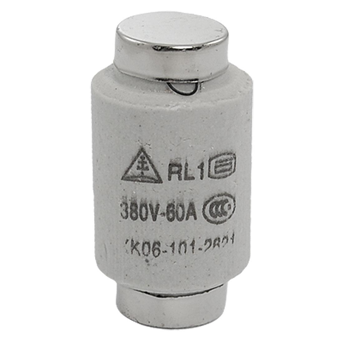 AC 380V 60A Ceramic Screw Type Fuse Link RL1