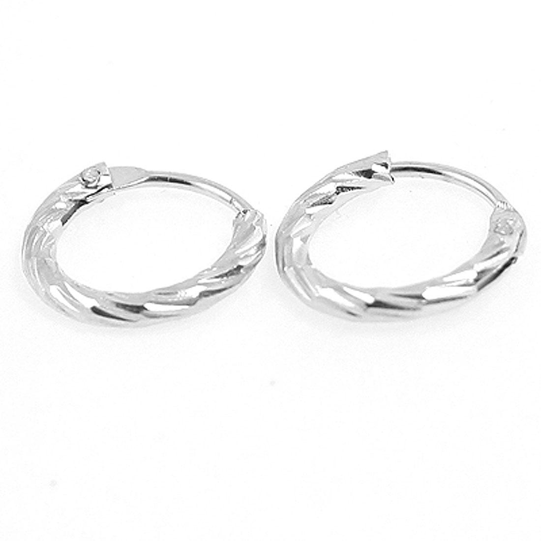 Woman 2 Pairs Silver Tone Metal Mini Hoop Earrings Earbob