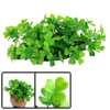 "7.1"" Width Plastic Green Clover Plant Grass Decor for Fish Tank"