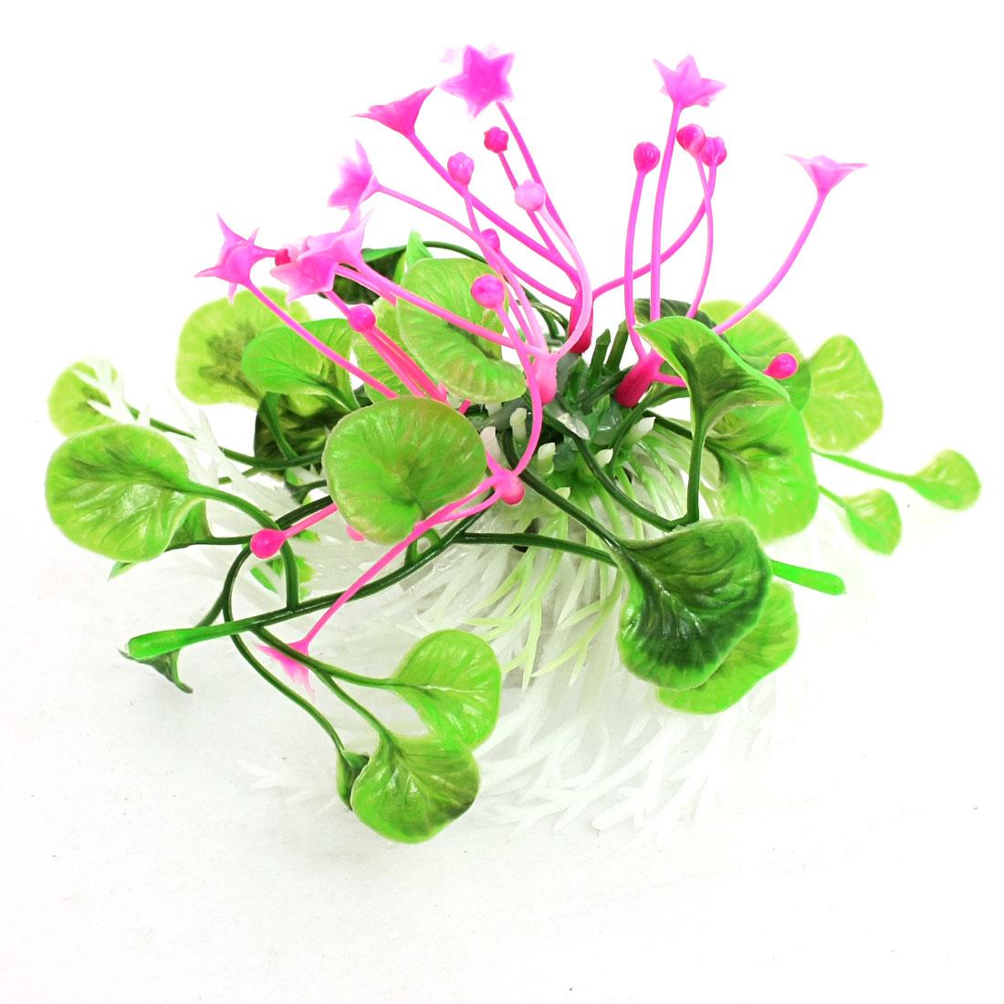 Fuchsia Star Accent Green Plastic Plants Ornament for Fish Tank