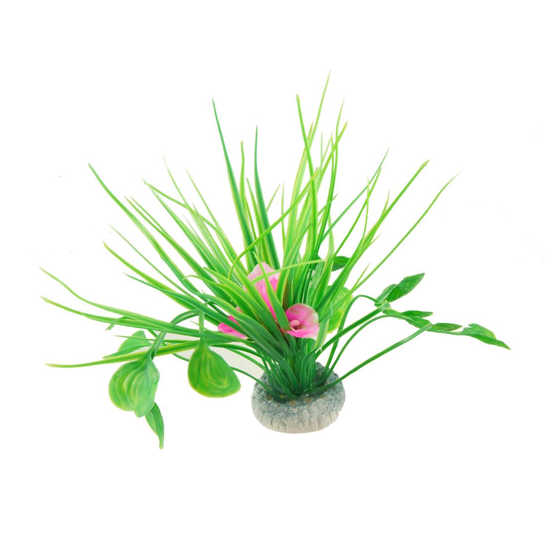 Fish Tank White Pink Flower Green Leaf Plant Grass Decor
