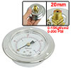 "Vertical Mount 1/4"" Water Air Pressure Gauge Silver Tone 0-15Kgf/cm2"