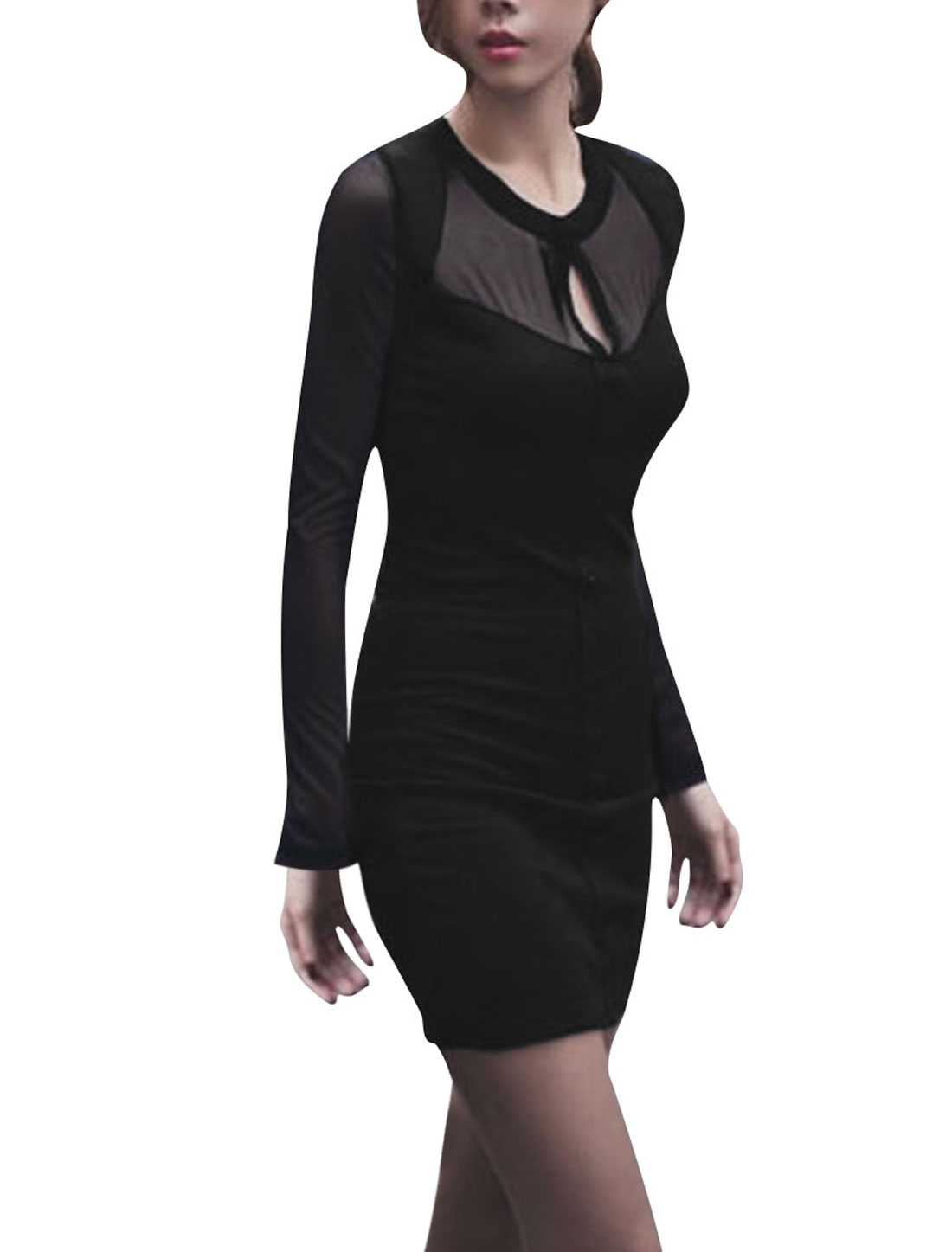 Ladies Long Sleeve Round Neck Semi Sheer Gauze Panel Black Dress XS