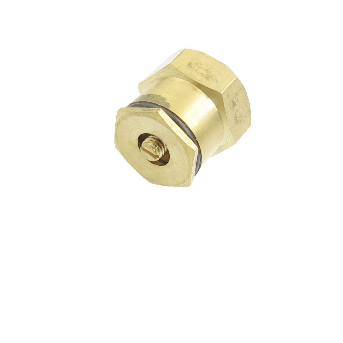 "Gold Tone Metal 1/2"" Female Thread Needle Jet Pipe Spray Nozzle"