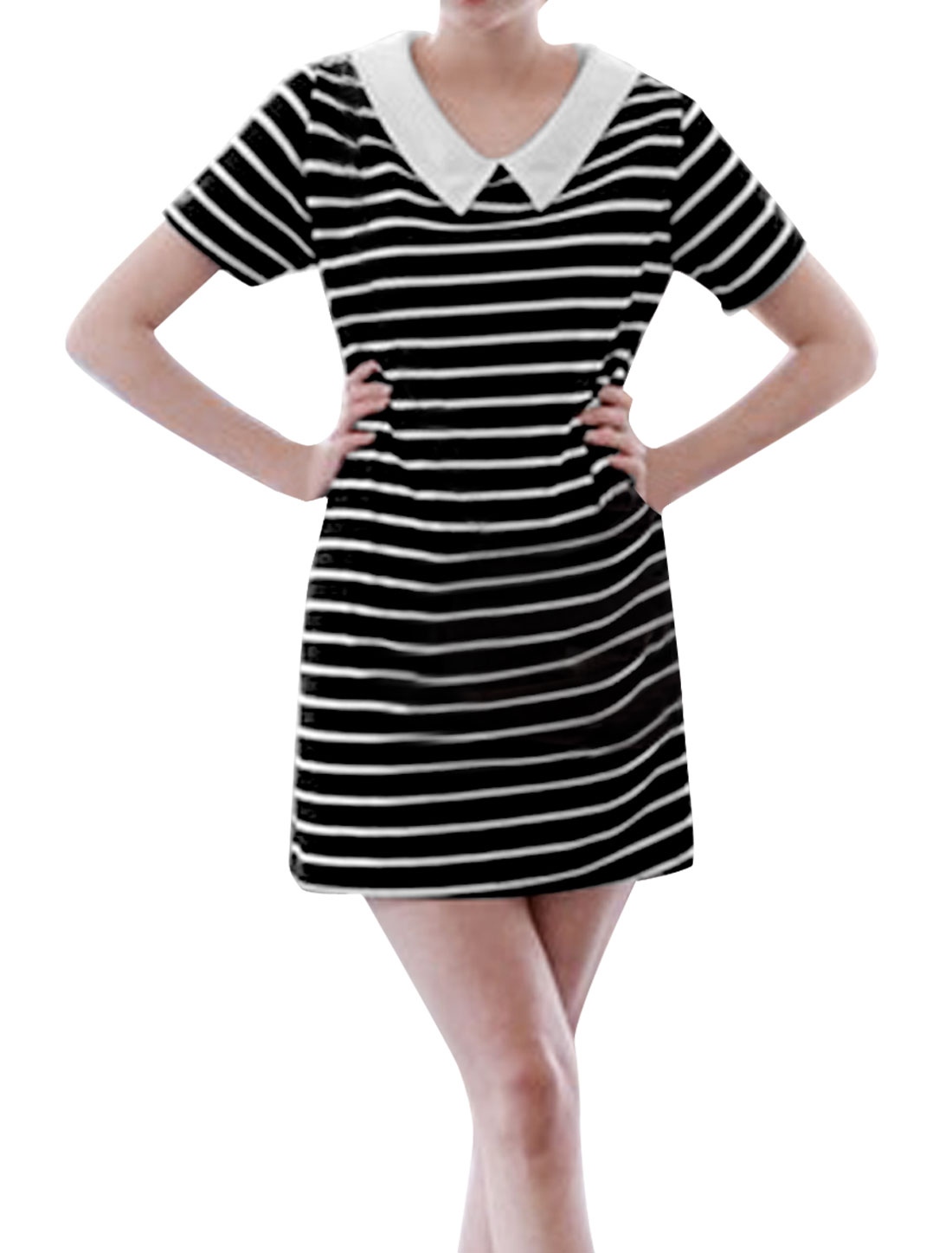 Ladies Doll Collar Short Sleeve Stripes Casual Dress Black White S