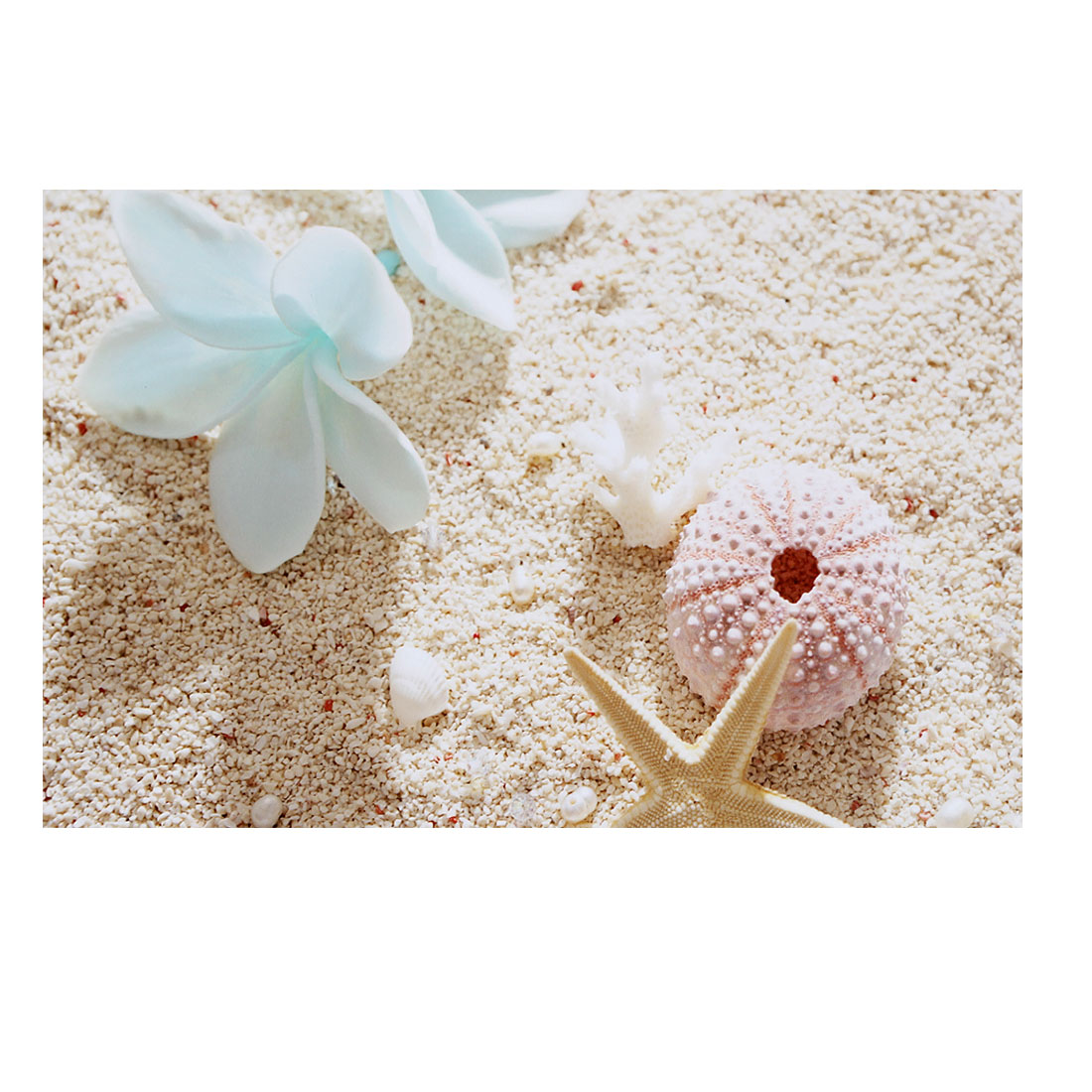 "White Flower Coral Beige Sand Seastar Decorative Sticker Decal for 14"" Laptop"
