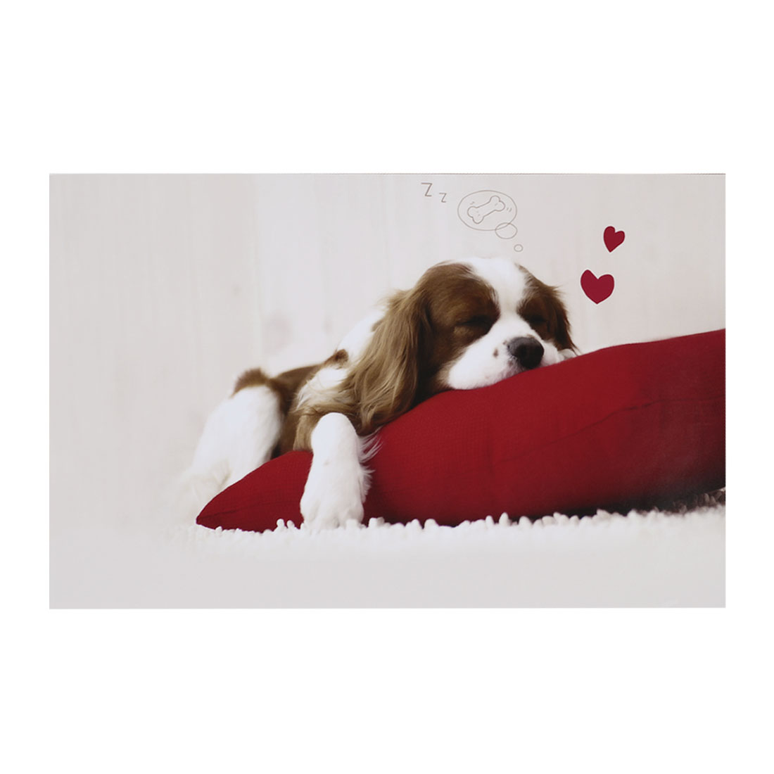 "Red Pillow Brown White Fluffy Dog Decorative Sticker Decal for 14"" Laptop PC"