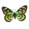 Plastic Green Black Butterfly Style Magnetic Sticker for Refrigerator Door