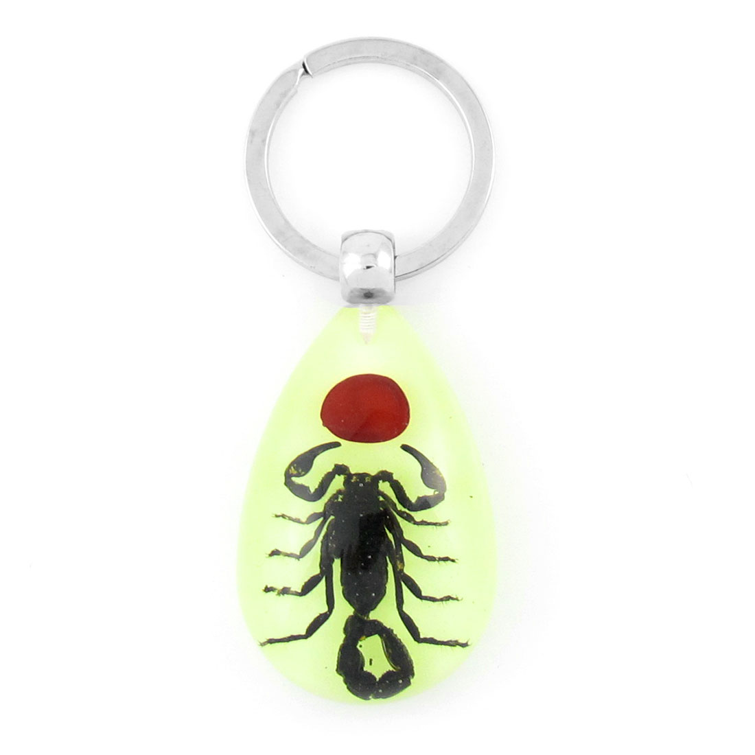 Black Scorpion Pattern Amber Pendant Split O Shape Ring Keychain