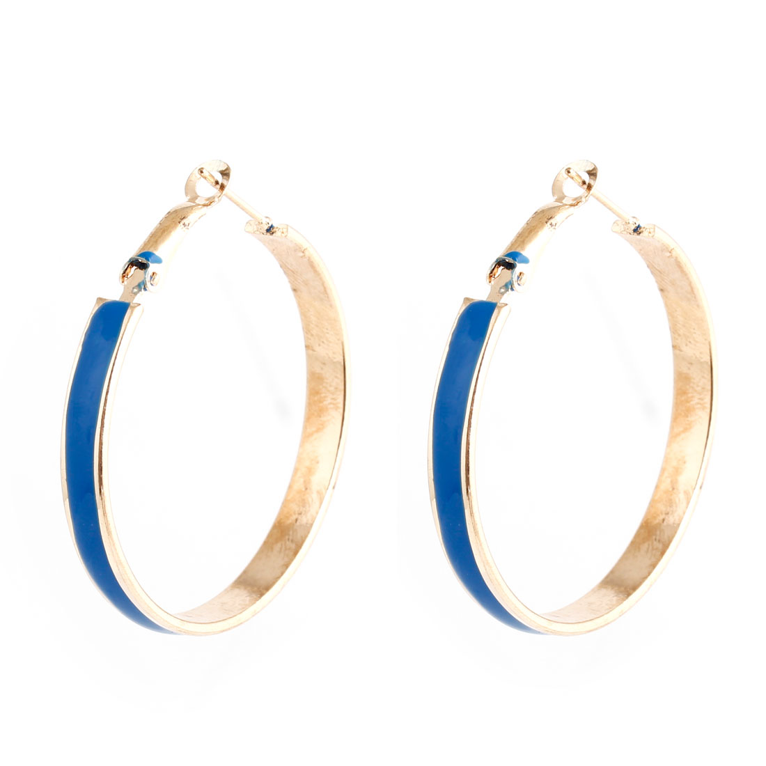 Woman Part Blue Plastic Coated Gold Tone Metal Circle Fish Hook Hanger Earrings Pair