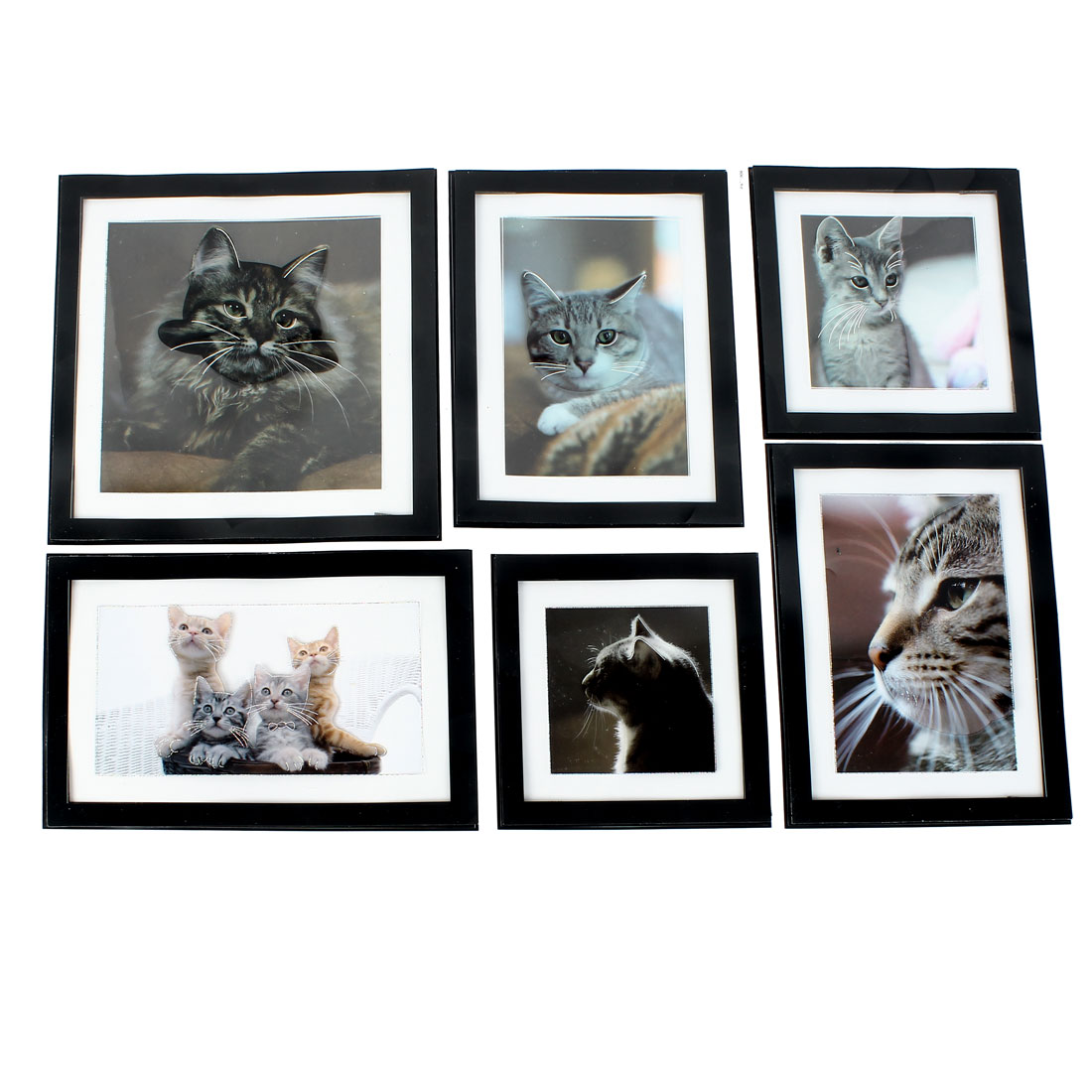 Home Living Room Decor 6 in 1 Cat Pictures 3D Wall Stickers Set Decal