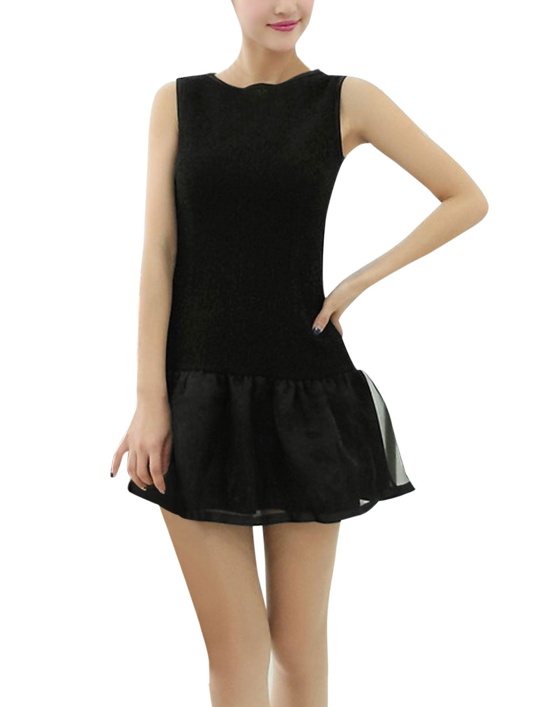 Lady Round Neck Semi Sheer Concealed Zipper Back Skater Dress Black XS