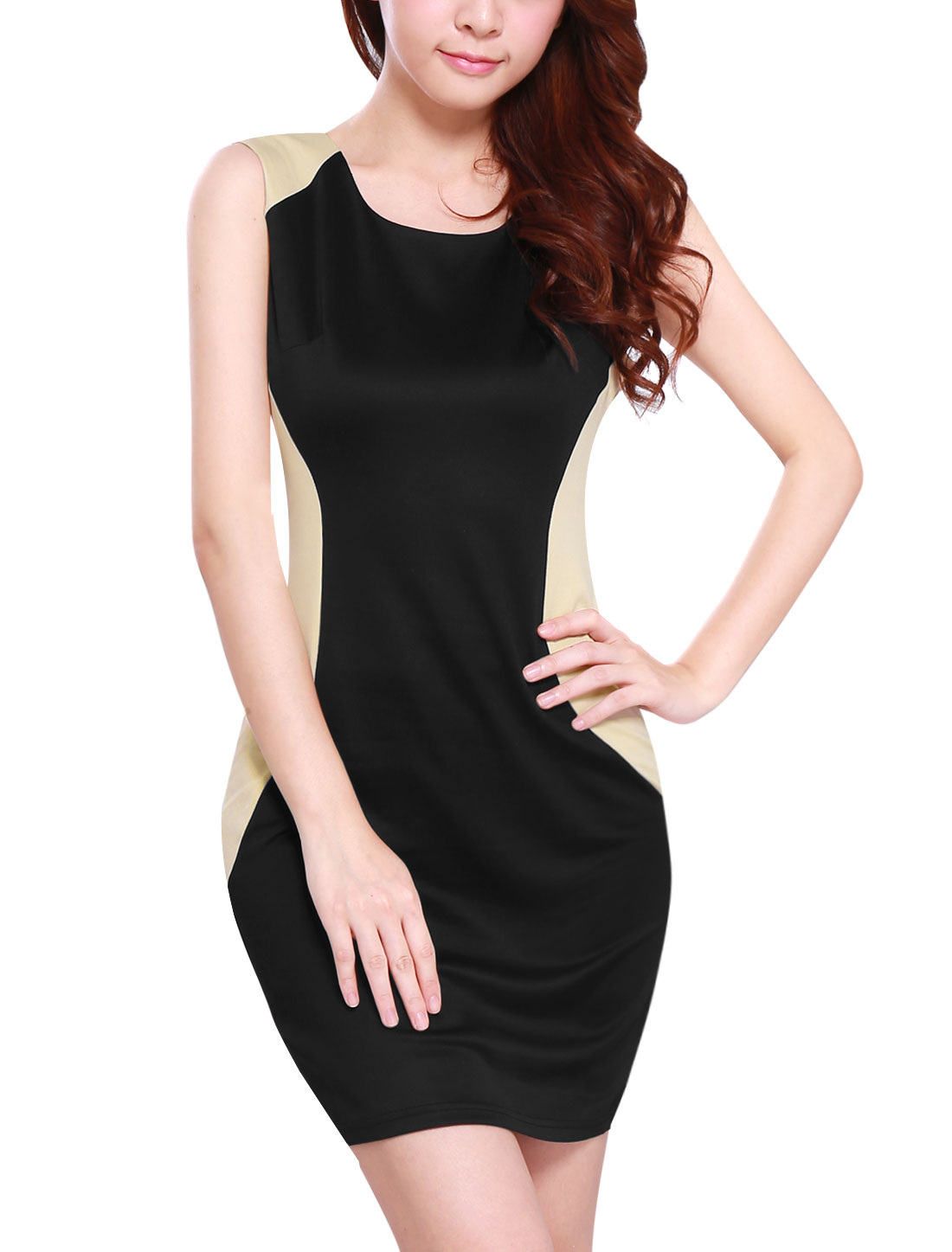 Lady Round Neck Colorblock Concealed Zipper Side Sheath Dress Black M