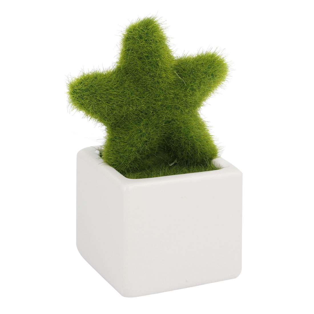 Home Office Table Ornamental Plastic Star Shaped Plant Pot Bonsai