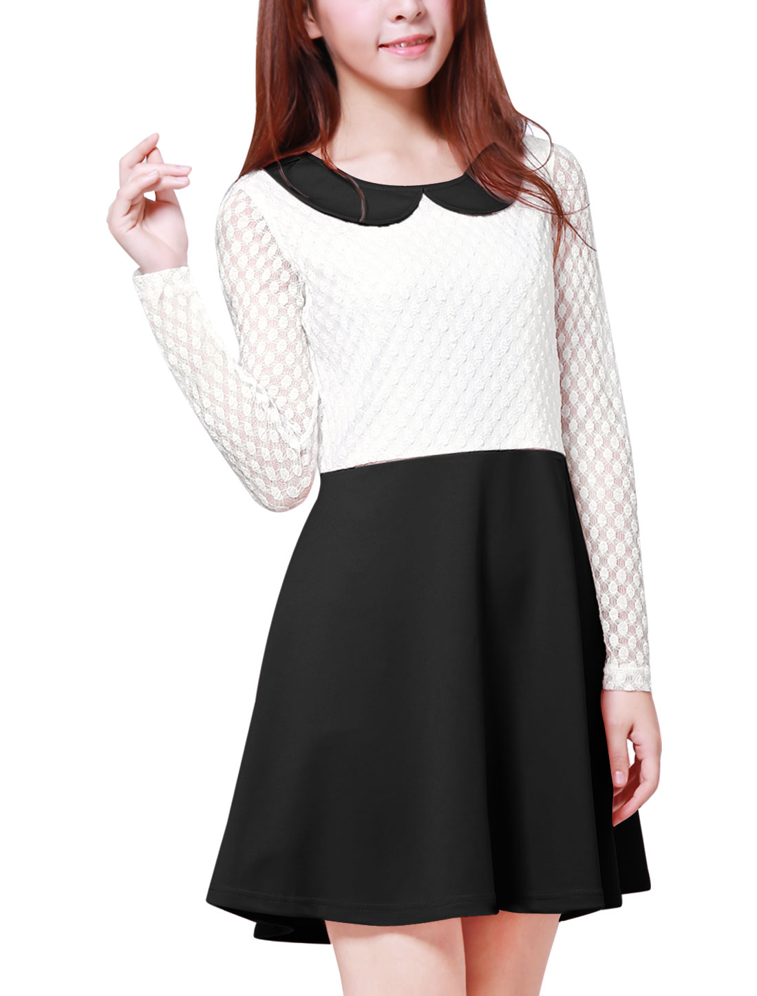 Women Doll Collar Mesh Panel Semi Sheer Above Knee Dress Black S