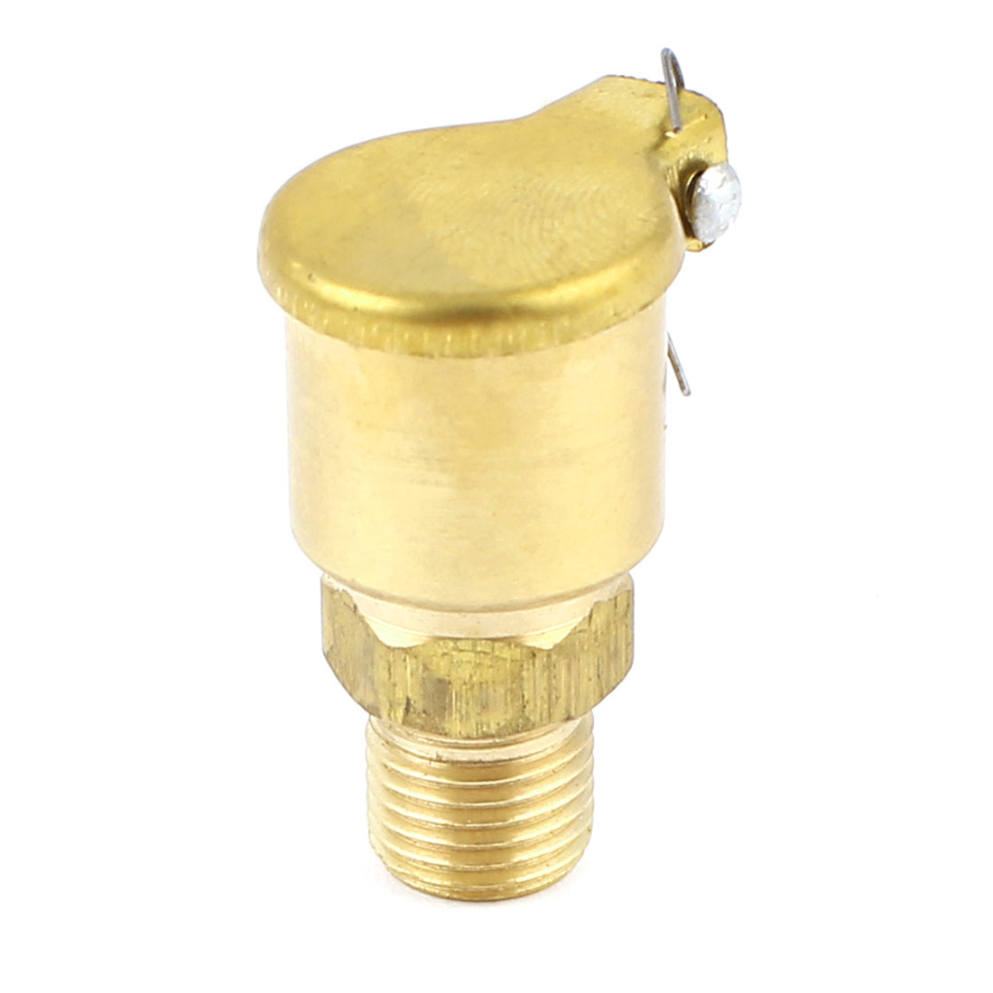 M10 Male Thread 1.5cm Dia Brass Spring Cover Cap Grease Lubricating Oil Cup