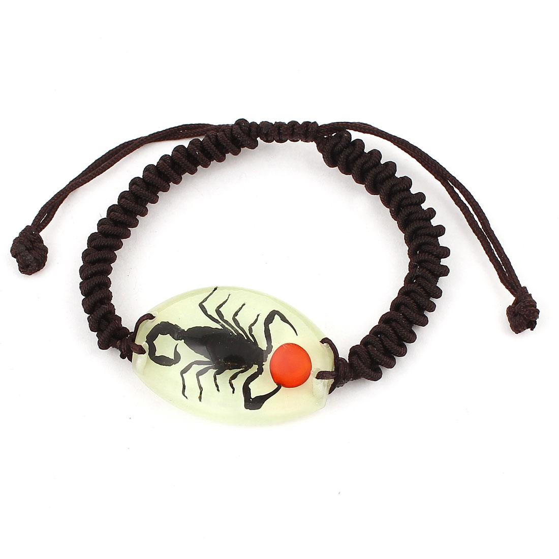 Scorpion Pattern Specimen Style Drawstring Closure Bracelet Decor Brown