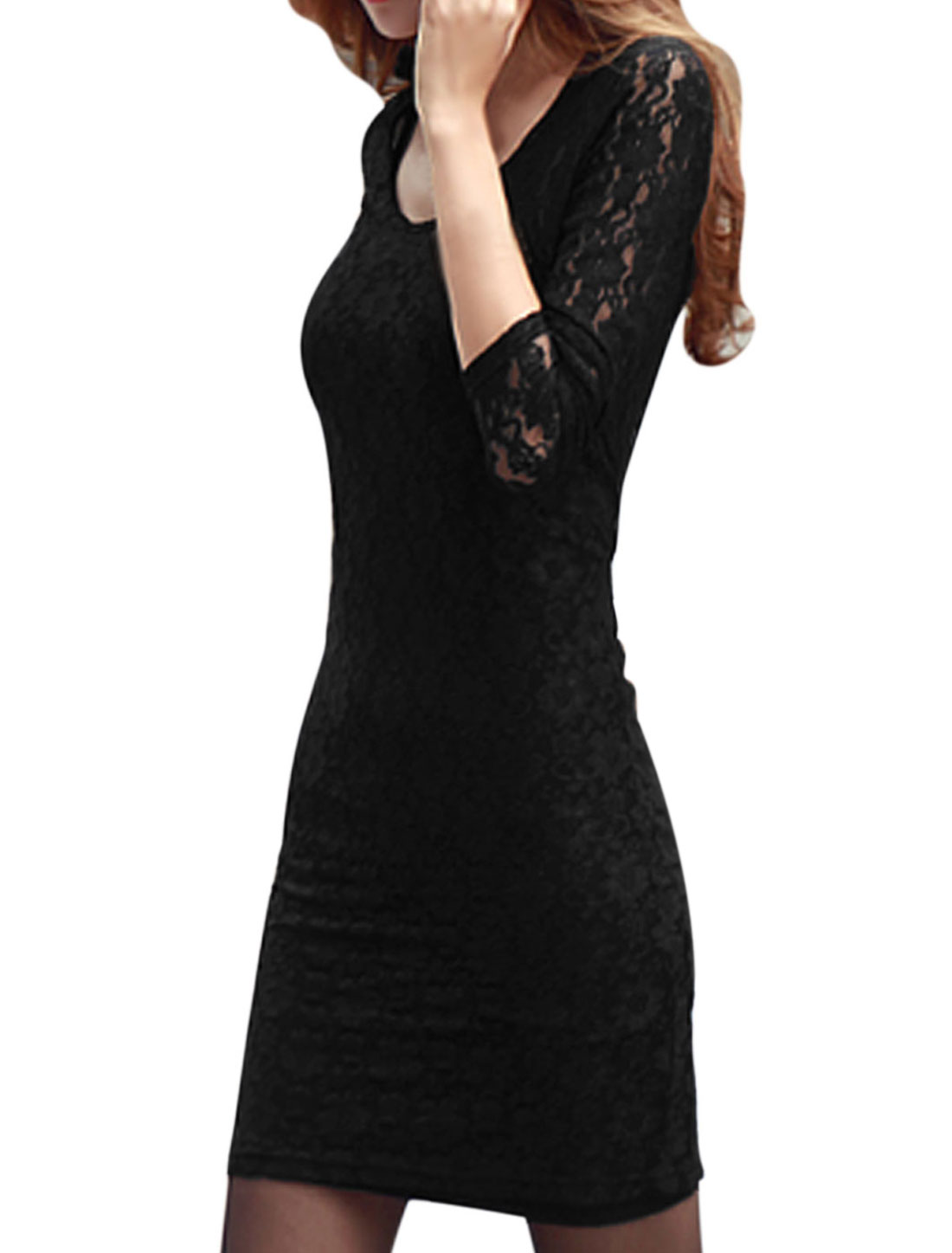 Women Round Neck Semi Sheer Long Sleeves Lace Sheath Dress Black M