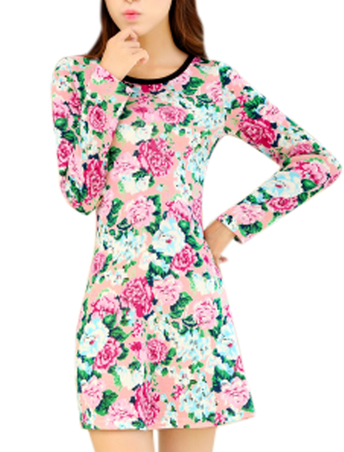 Women Round Neck Long Sleeve Floral Pattern Casual Short Dress Blue Pink XS