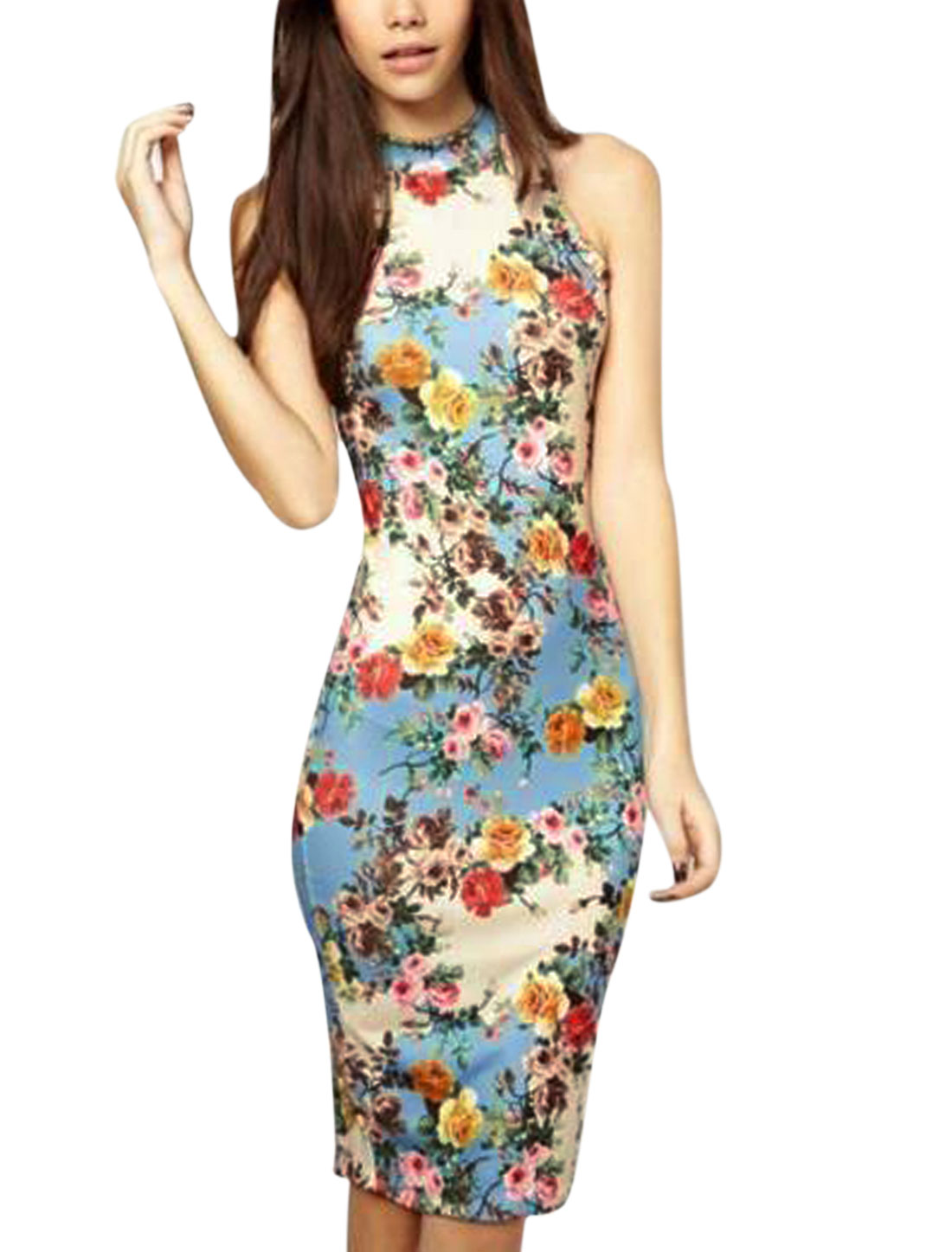 Woman Floral Prints Stand Collar Sleeveless Bodycon Wiggle Dress Blue Beige M