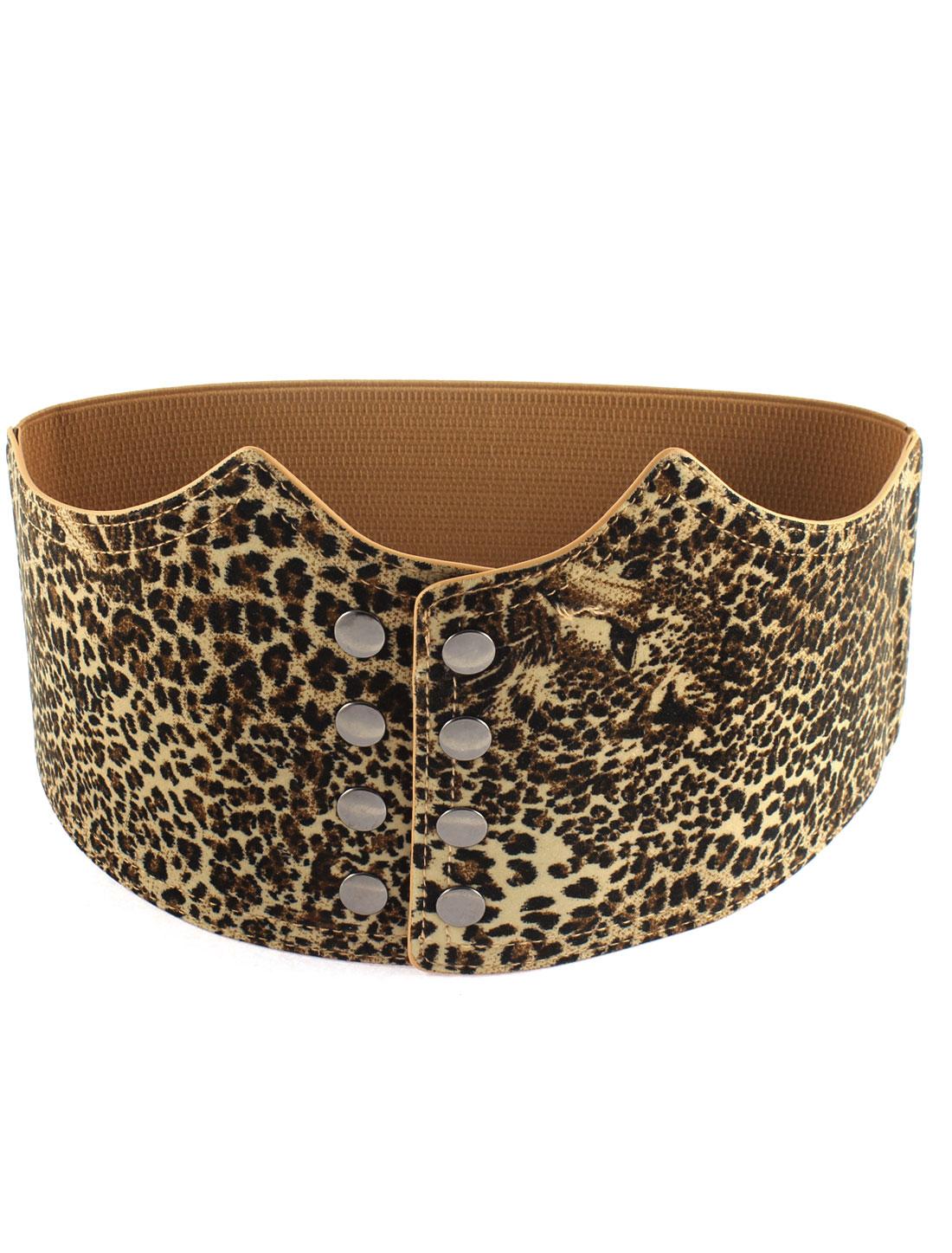 Leopard Print Pattern Press Stud Button Closure Buckle Waist Belt