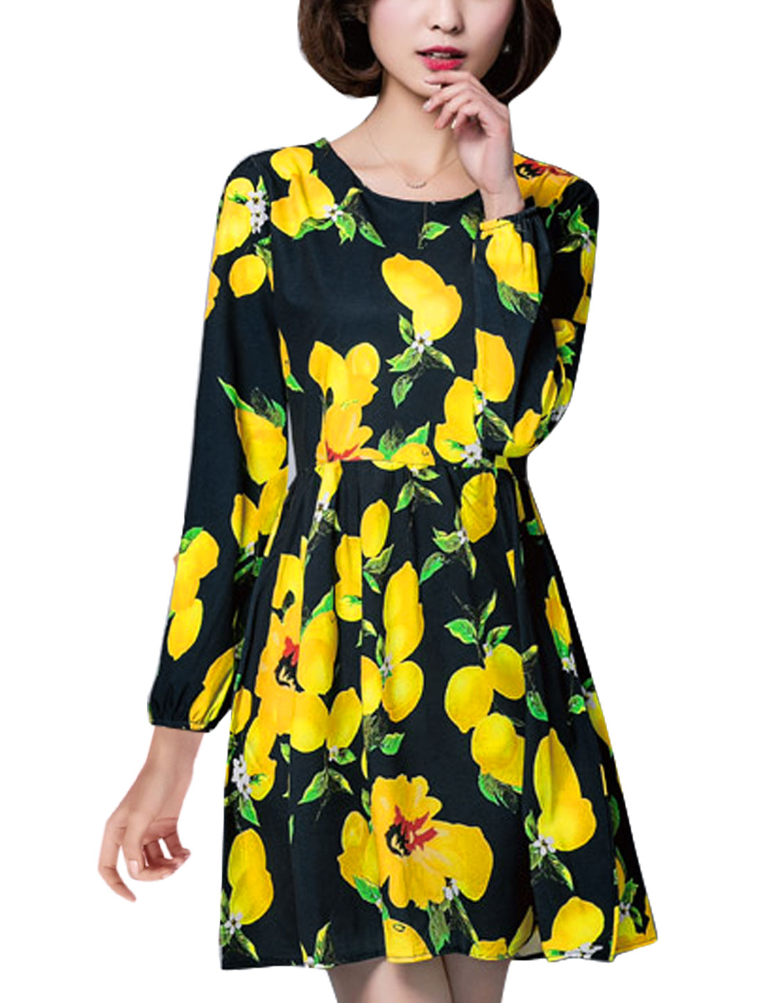 Women Lemon Prints Round Neck Long Sleeves A Line Dress Black S
