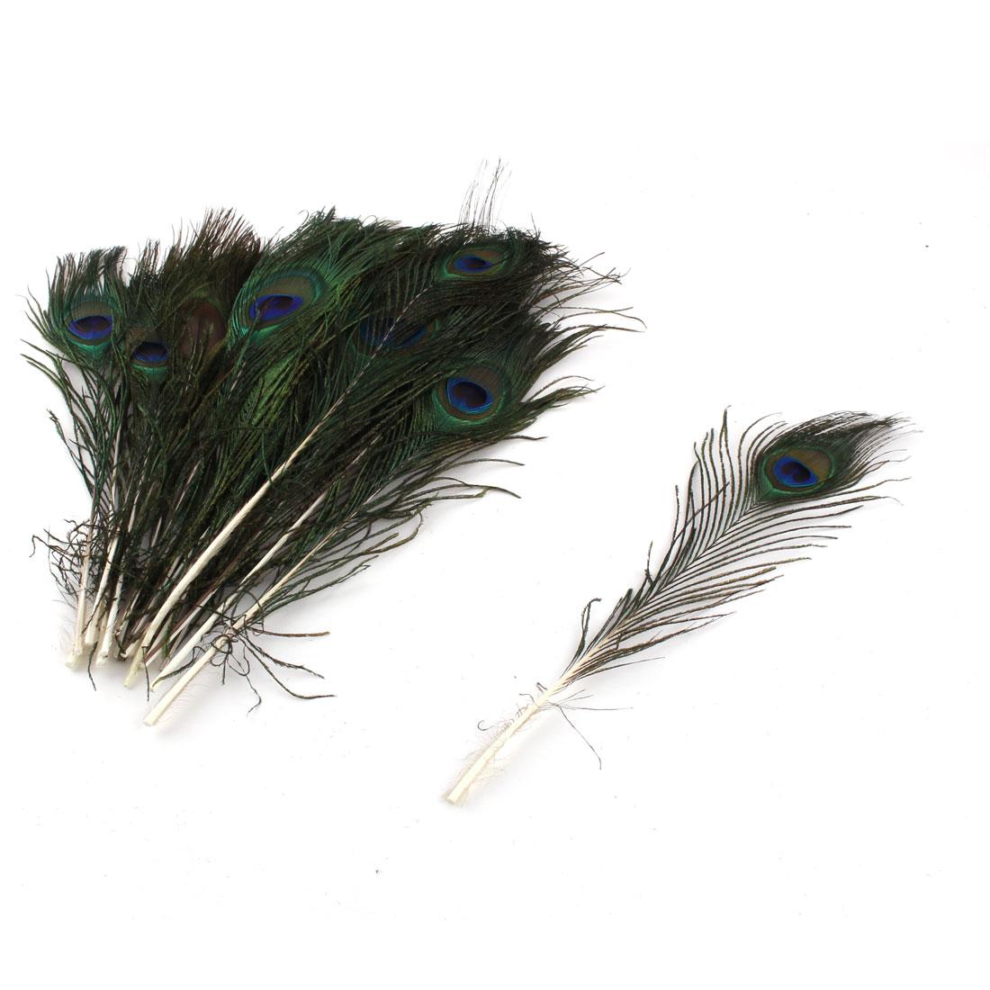 Home Bar Clothes DIY Decor Natural Peacock Feathers Eye 25-30cm Length 20 Pcs