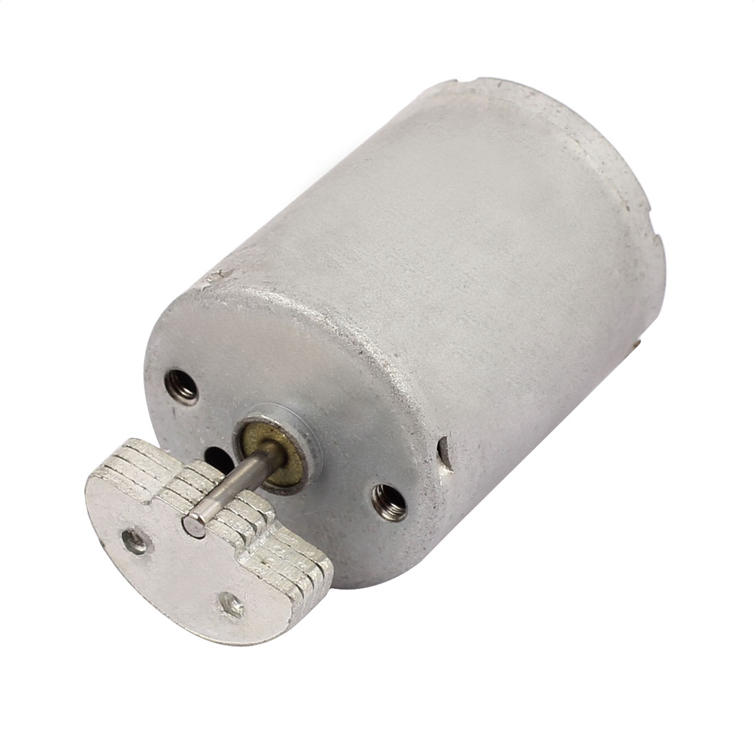 DC 24V 3800RPM Large Torque High Speed Micro DC Motor for Electric Massage