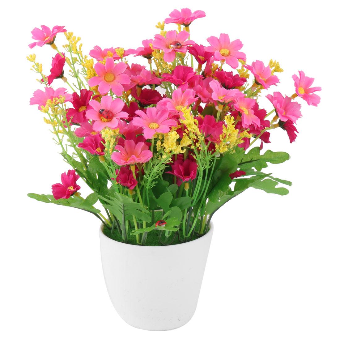 Home Plastic Artificial Dasiy Flowerpot Craft Desktop Table Decor Flower Fuchsia