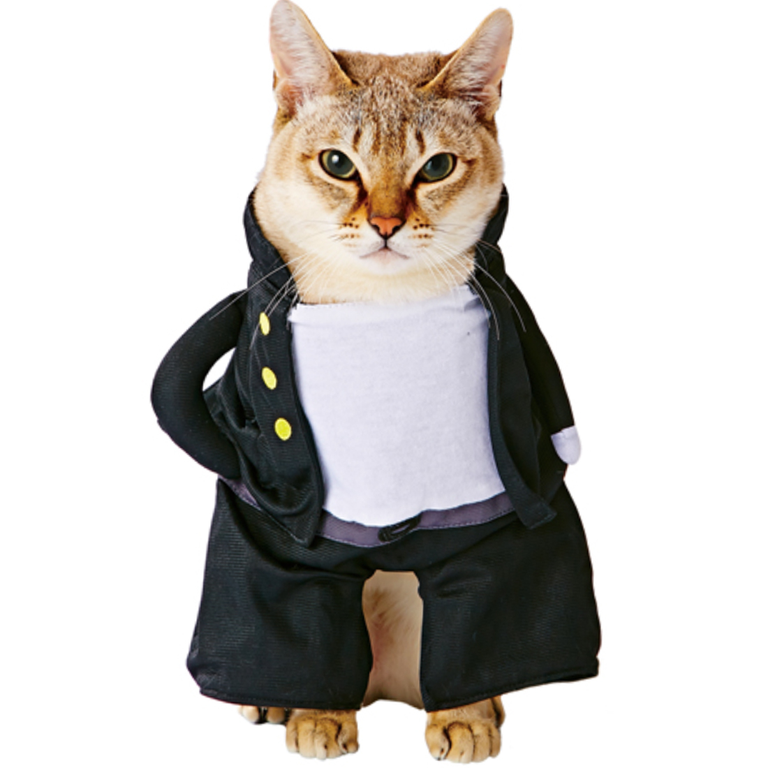 Petio Halloween Men High School Uniforms Style Cat Kitty Pet Dress Costume White Black