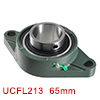 Pillow Block Bearing UCFL213 65mm Inside Diameter Two Boltflange Cast Hosing