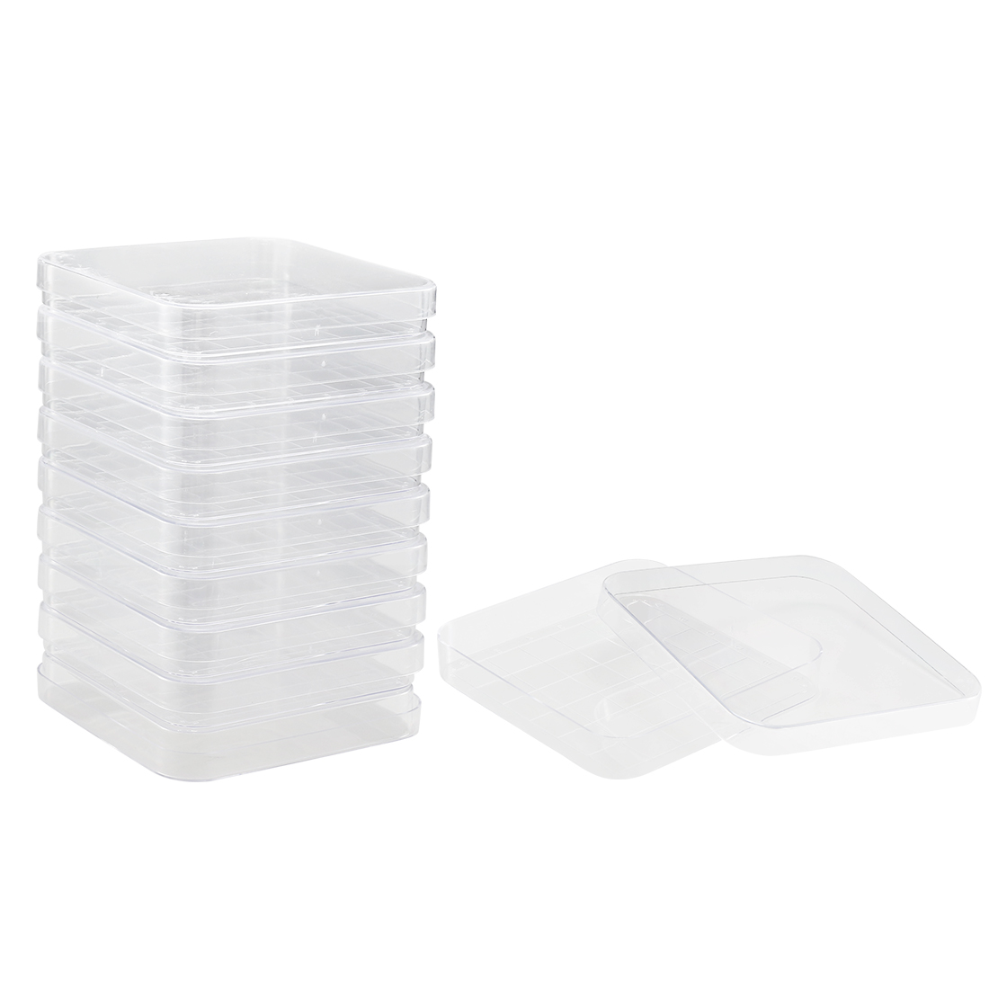 Plastic Square Integrid Petri Dish Plates, 100mm x 100mm, 17mm Height, 10 Pack