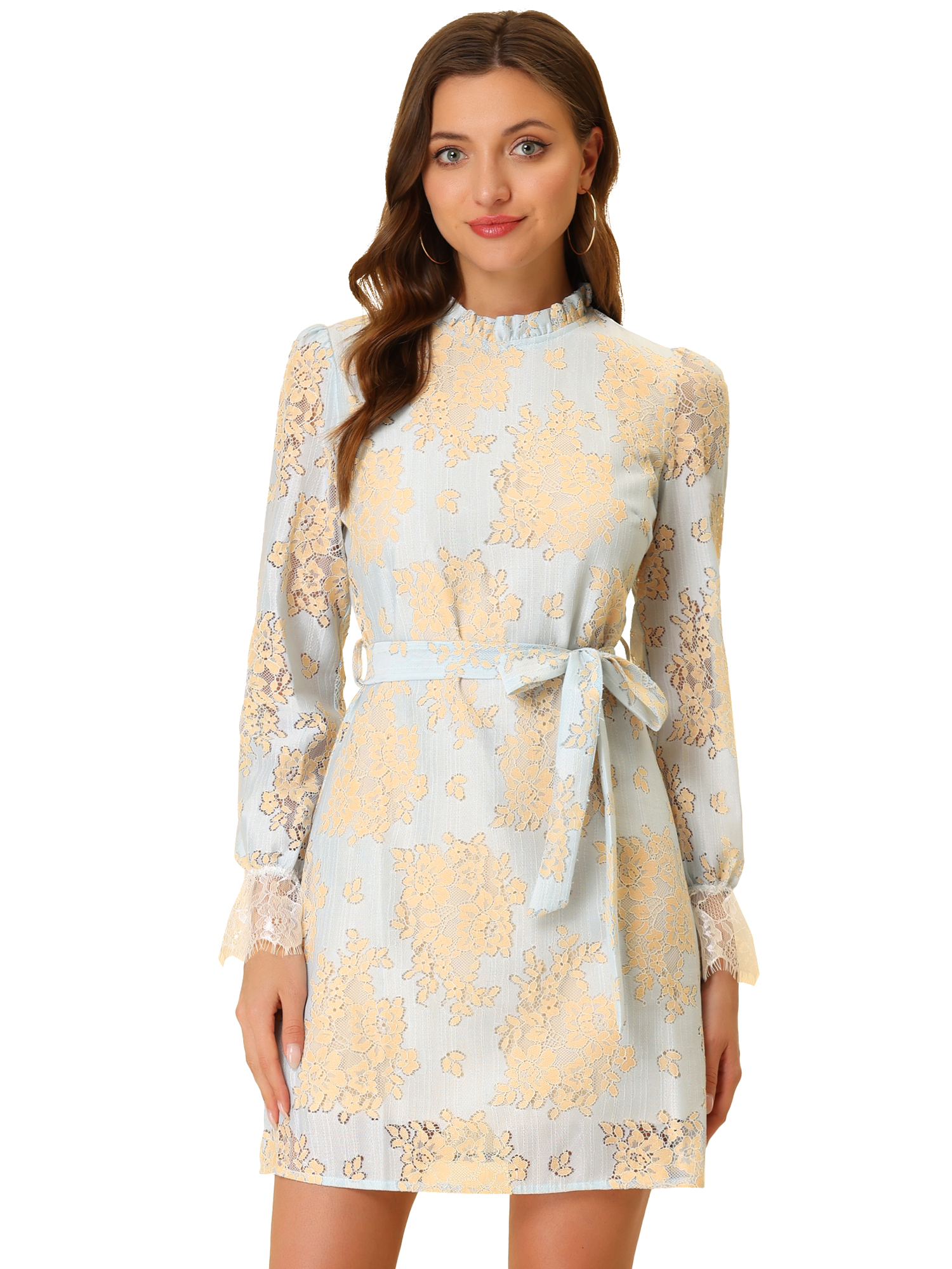 Allegra K Women's Ruffle Crew Neck Mini Floral Lace Dress Light Blue L